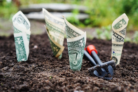 money-garden-dirt-tools